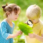 Les activités pour les petits