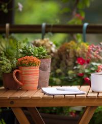 atelier jardinage botanique parc tête d'or