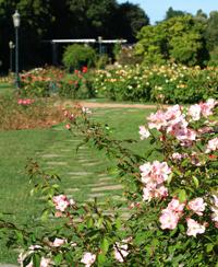 ateliers visites lyon parc tête d'or jardin botanique nature activité
